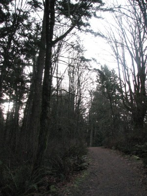The North Side Trail Up to the Top
