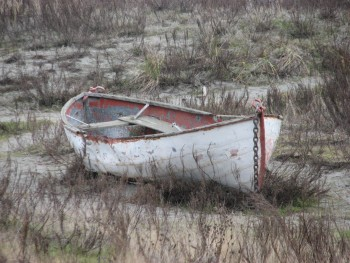 A Lonely Rowboat on the Dunes at Fort Worden