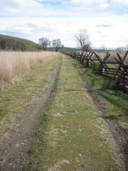 A Section of the Oregon Trail at the Whitman Mission Site