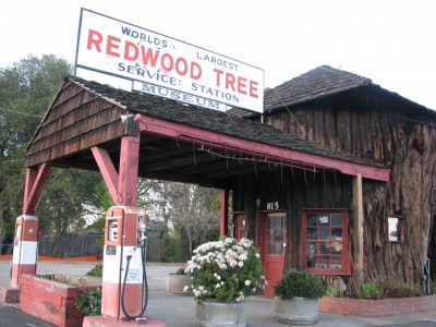 The Redwood Tree Service Station Museum - Ukiah, California