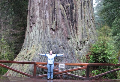 Me Sizing Up the Big Tree