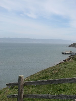 The View From Elephant Seal Overlook - the Historic Life Saving Station is in the Distance