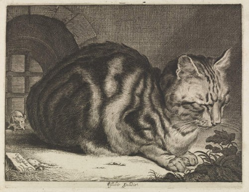 The Large Cat - Cornelis Visscher - 1657
