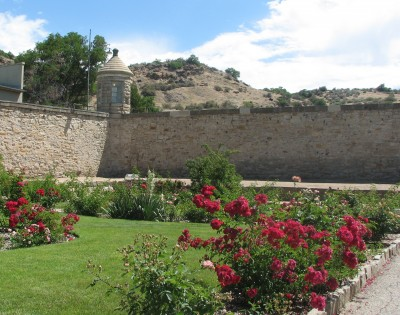Old Penitentiary Rose - Where Executions Were Carried Out Early On