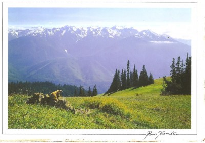 This is what Hurricane Ridge would look like on a clear day.