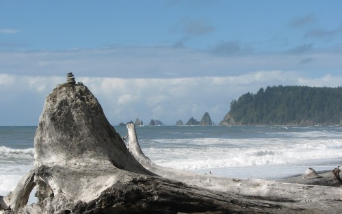 I love the little stack of rocks on this driftwood log - Rialto Beach