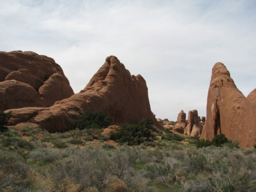 A good view of the fins that form at Arches National Park