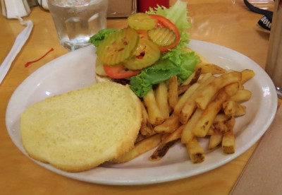 My buffalo burger and fries!
