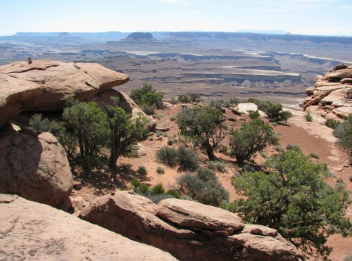 Canyonlands National Park – Looking into Stillwater Canyon from Murphy Point