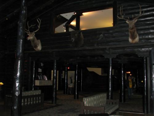 Dead Heads Inside the El Tovar Hotel