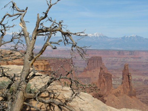 Canyonlands National Park – Looking into the Canyon – The La Sal Mountains are in the Background