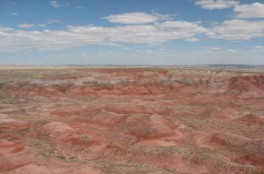 The red layers of the Chinle Formation