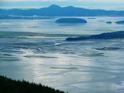 Looking Out Over the Tide Flats of Skagit County