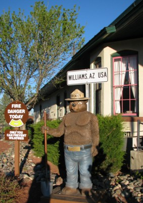 Smokey the Bear has a presence in Williams, Arizona