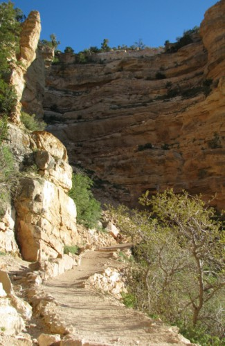 The South Kaibab Trail, with the first set of switchbacks dead ahead