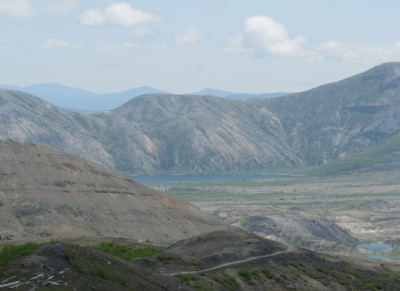 A view of Spirit Lake, off in the distance. In the lower right corner, you can see trees that were buried by the ash.