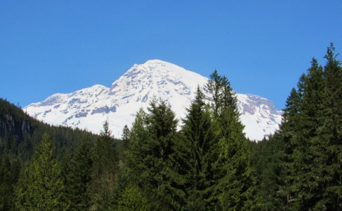 Mount Rainier from the Longmire Historic District