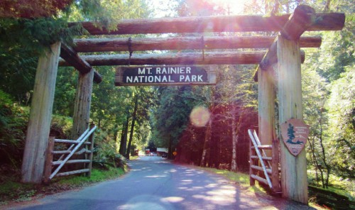 The entrance to Mount Rainier at Longmire - sparkling in the light of a gorgeous spring morning!