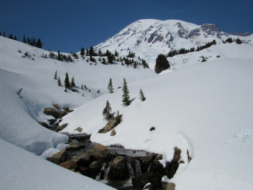 Edith Creek looking up at Mount Rainier