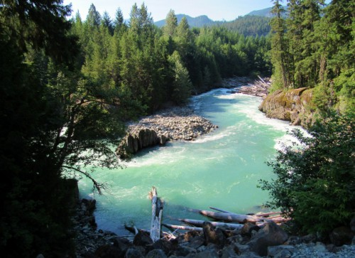 The view of the Cheakamus River, on the train wreck hike.