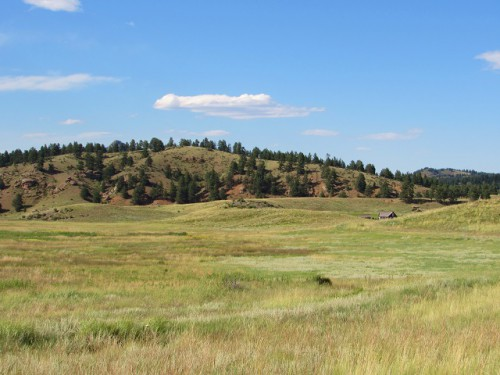 The view from the trail - looking over at the Hornbek Homestead