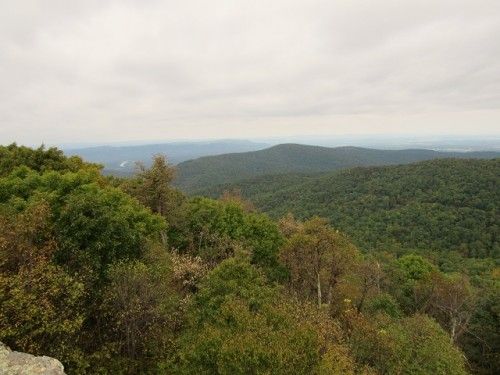The view at the top of the Compton Gap Trail. Trees, as far as the eye can see!