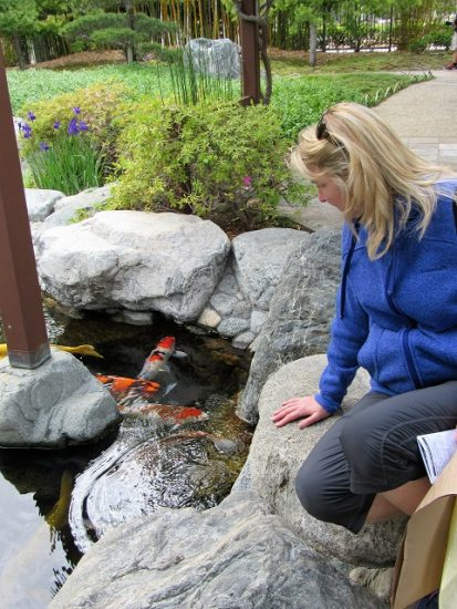 Angela checking out the Koi at the Japanese Garden