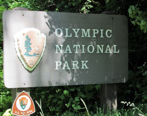 Olympic National Park!