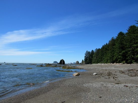 The beach at Sand Point