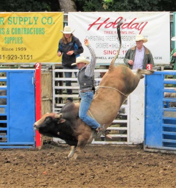 bull-riding2