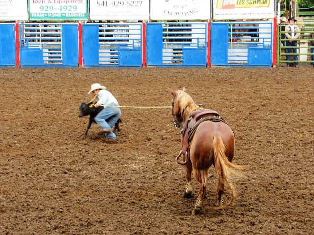 calf-roping-1