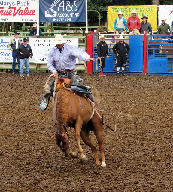 saddle-bronc-riding-1