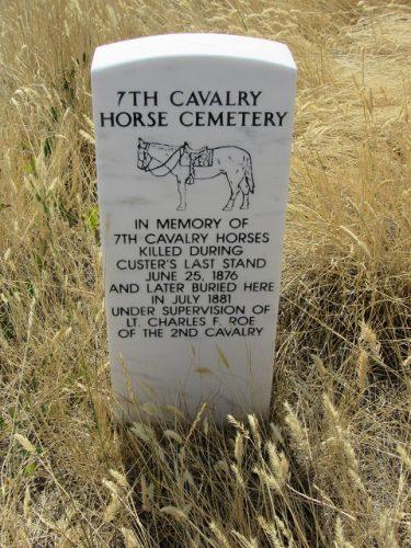 horses-marker