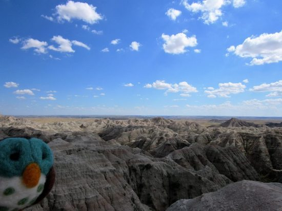 Piddles enjoying the view of the Badlands