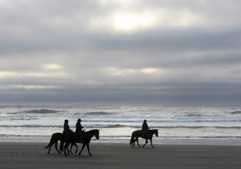 Horses on the beach at Fort Stevens