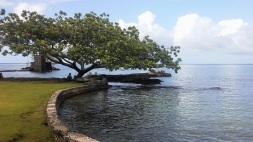 Liliuokalani Gardens in Hilo