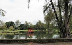 The Japanese Garden at Liliuokalani Gardens