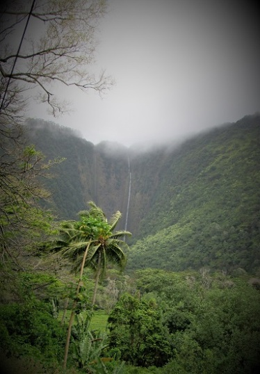 The Waipio Valley Waterfall in mist
