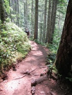 The trail to Murhut Falls