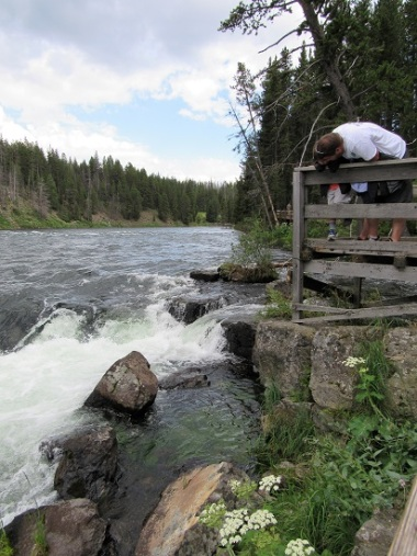 My brother and nephew checking out the Cutthroat Trout below