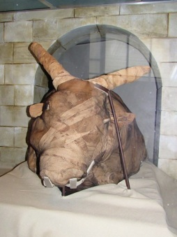 Mummy of a Bull's Head