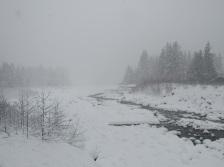 Rainier-River