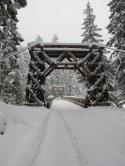 The Longmire Suspension Bridge