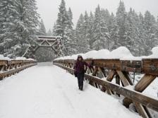 Me on the Longmire Suspension Bridge