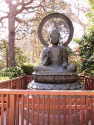 SF-Japanese-Garden-12