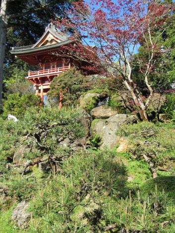 SF-Japanese-Garden-13