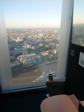 Shard-Toilet-View