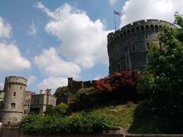 Windsor-Towers