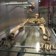 A skeleton unearthed at the baths