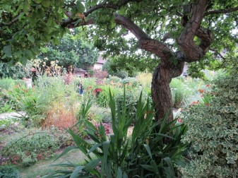 The garden at Shakespeare's birthplace